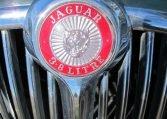 1964 Jaguar Badge