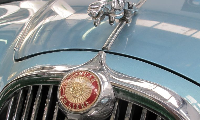 1966 Jag S-Type - Front Badge