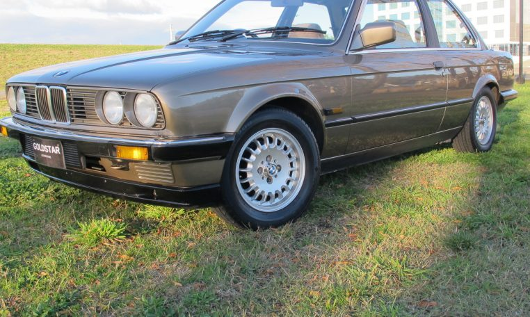 1983 BMW 318i - Front Guard