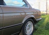 1983 BMW 318i - Rear Guard